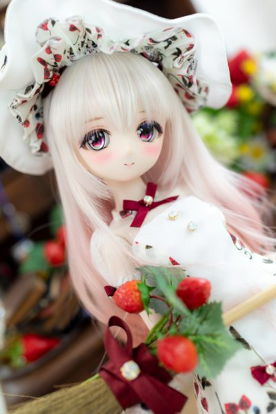 https://ronshuka.jp/portofolio/custom-dolls/LWS2020mau